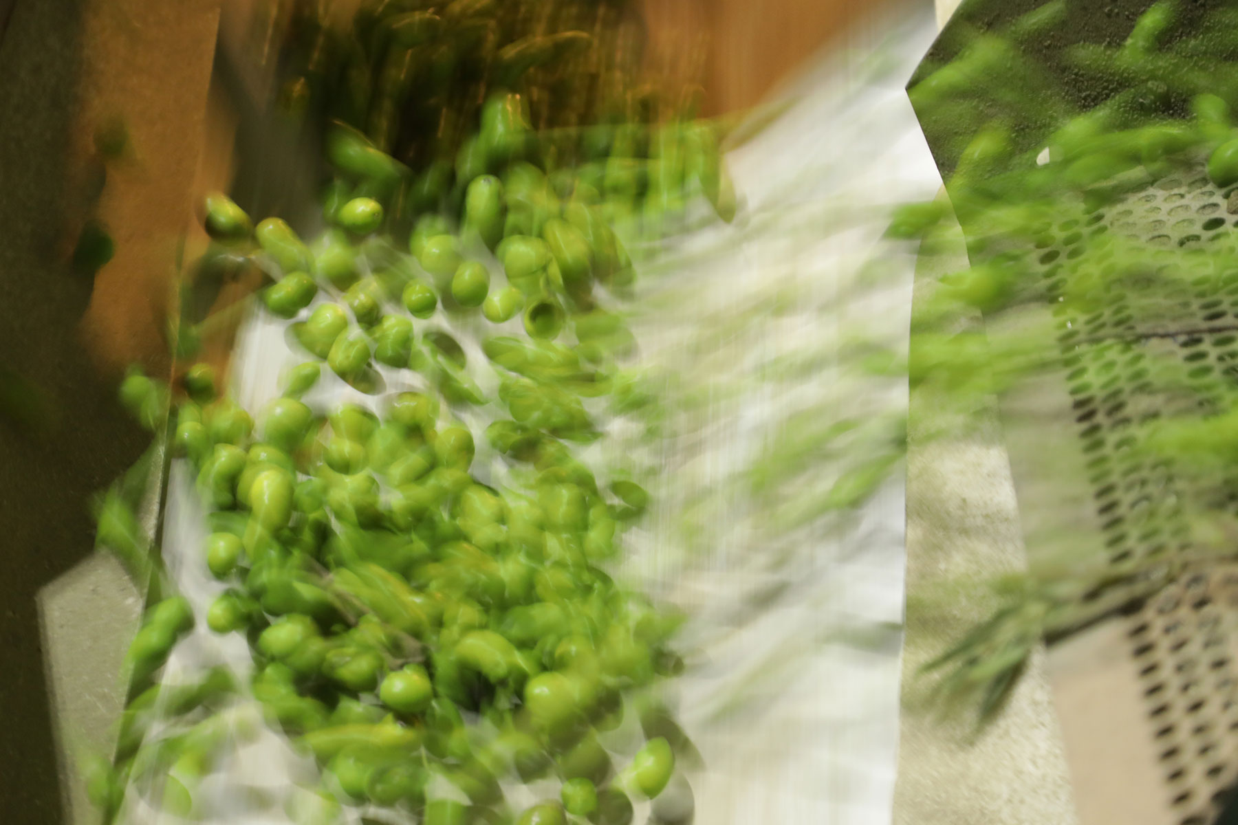 Aceitex---Aceite-de-oliva-virgen-extra--Transporte